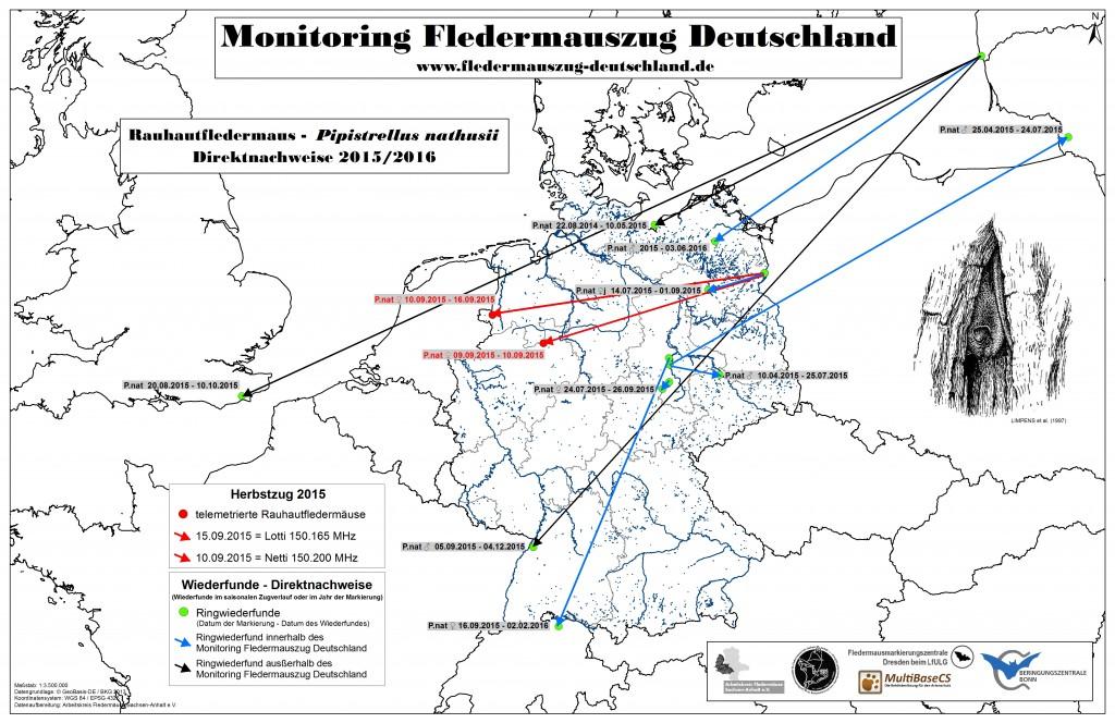 16_Projekt-Monitoring-Direktnachweise-2015_161